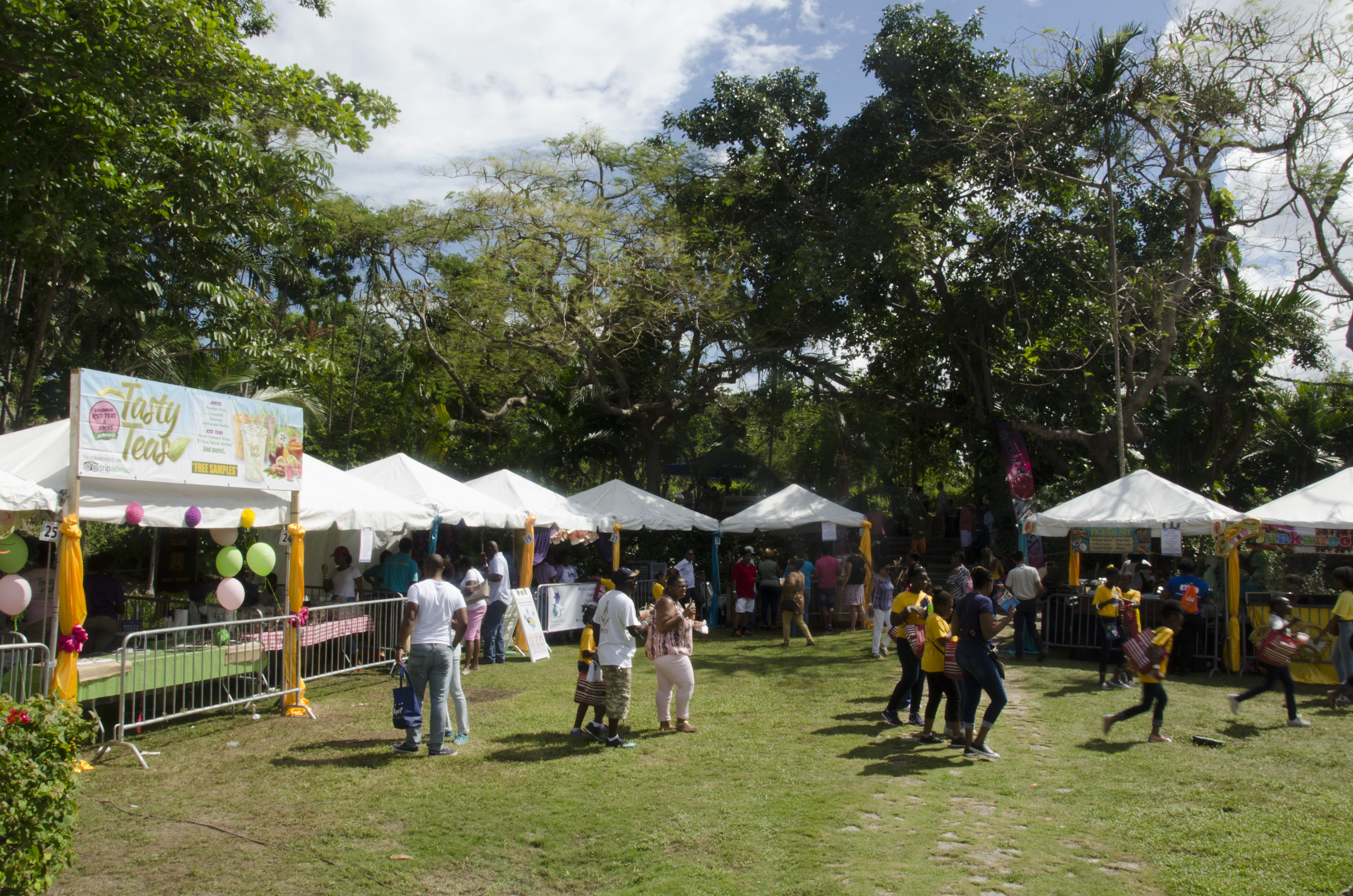 Bahamian Booths at International Cultural Festival