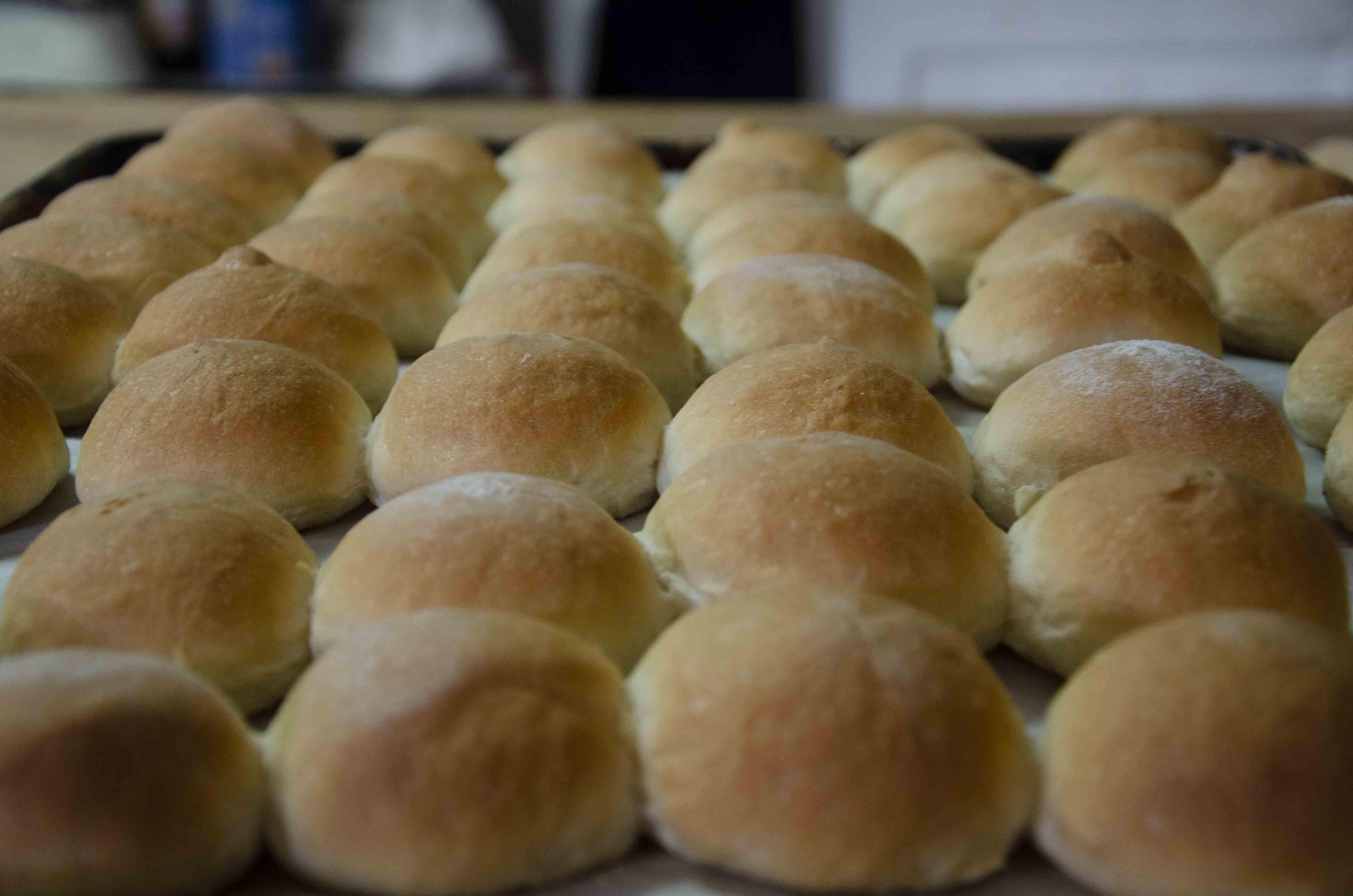 Model Bakery dinner rolls